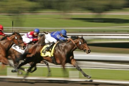 carrera-de caballos